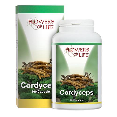 CORDYCEPS 100CPS FLOWERS OF LI