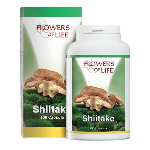 SHIITAKE 100CPS FLOWERS OF LIF